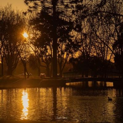 唯美黄昏风景背景图|橘子汽水的